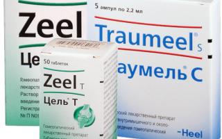 Применение уколов Траумель при болях в спине и суставах