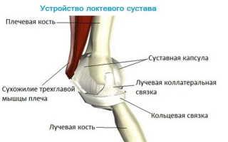 Появление болей в локтевом суставе при поднятии тяжести