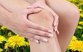 Эффективное лечение болезней суставов одуванчиком