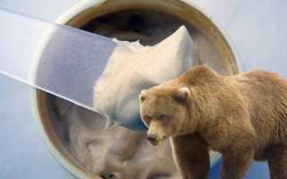Лечение болезней суставов с помощью медвежьего жира