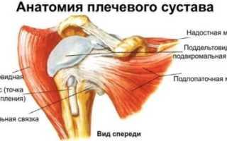 Когда назначают пункцию плечевого сустава и как ее проводят?