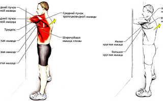 Возникновение мышечной боли в спине и ее лечение